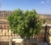 تشطيب مبنى خدمات مقبرة قطنة الإسلامية الجديدة في أرض الوقف